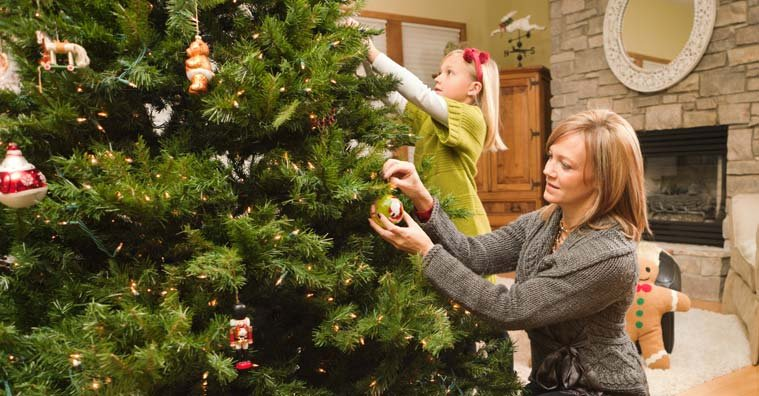 Tips for Buying Christmas Trees